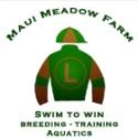 Maui Meadow